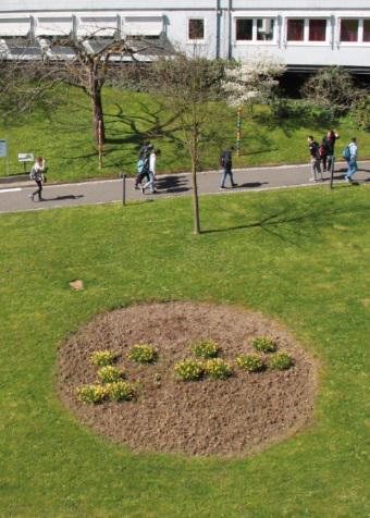 100 Jahre blista - die Zahl 100 im Blumenbeet auf dem belebten Campus lesbar
