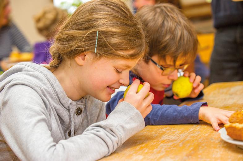 2 Kinder untersuchen die gepflückten Äpfel