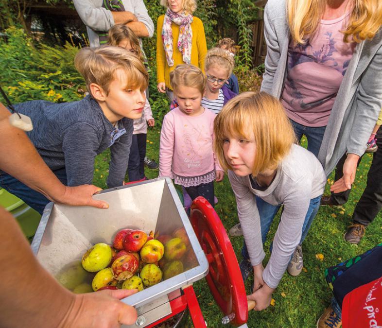 Eine Gruppe von Kindern hilft beim Äpfelwaschen