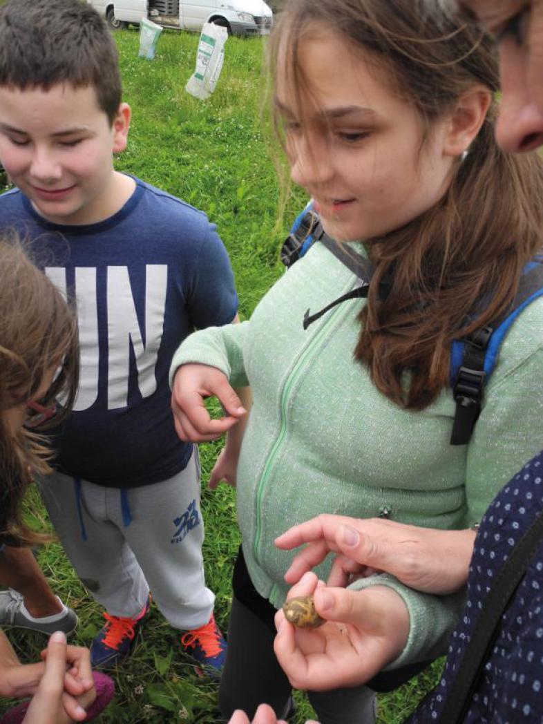 Schüler halten ganz kleine Kartoffeln in den Händen