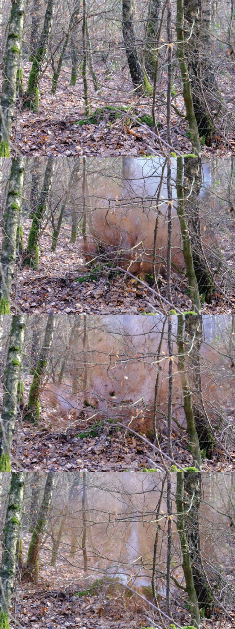 Die Sprengung von TNT ist in einer Folge von 4 Bildern dargestellt.