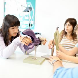 Schüler studieren ein Blütenmodell.