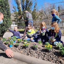 Gemeinschaftliche Frühlingsblumenpflanzung