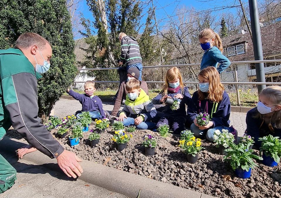 Bild 1 von 7: Gemeinschaftliche Frühlingsblumenpflanzung