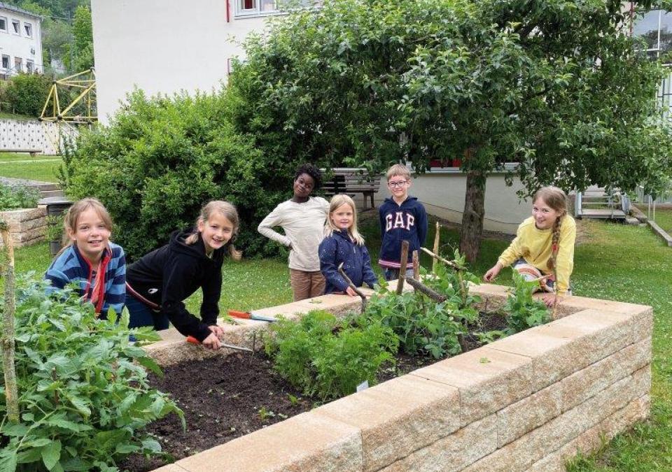 Bild 2 von 6: Kinder am vielfältig bepflanzten Hochbeet