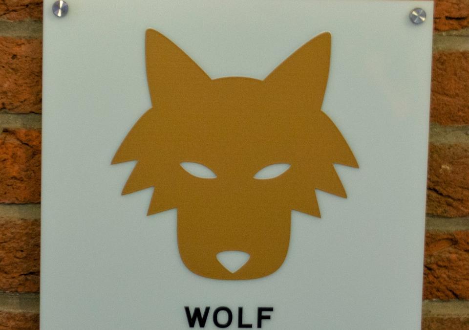 Bild 6 von 17: Wolf