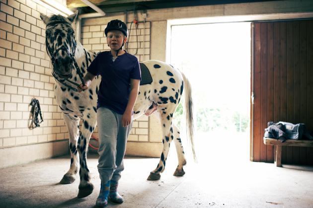 Ein Junge führt ein Pferd im Stall